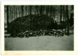 Woodpile at Linger Lodge