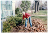 Leaf Raking at Oakwood