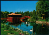Large Postcard of Chinese Gardens