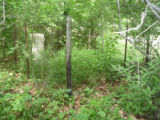 Allens Creek Old Cemetery