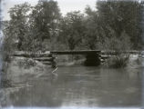 Log bridge across Black river, Posey County, IN