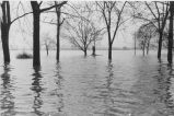 Flood, Evansville, IN, January, 1937