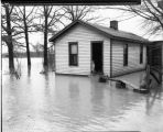 Flood, 1937,  Evansville, IN