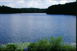 View of Lake Shakamak at water's edge