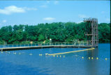 Swimming and diving platform
